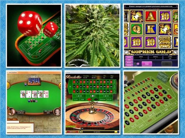 Онлайн казино и Ставки на спорт в одном месте - Casinia